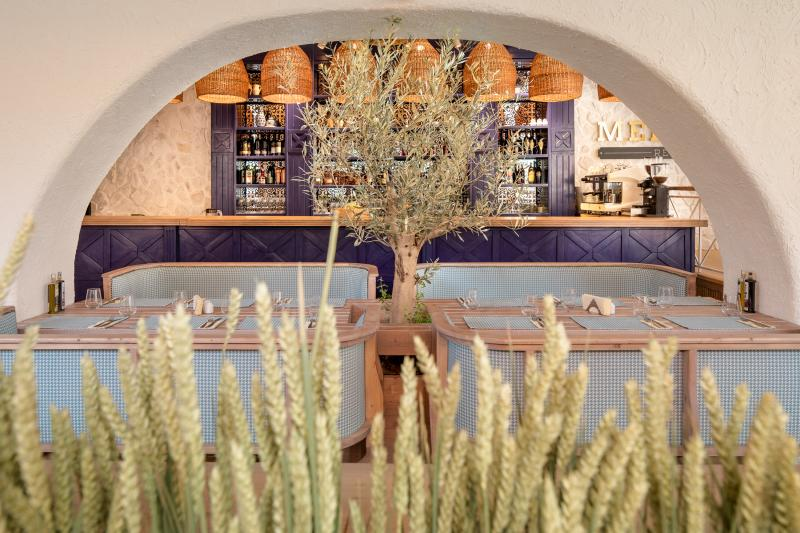 bela benedek, mediterra, restaurant, brasov